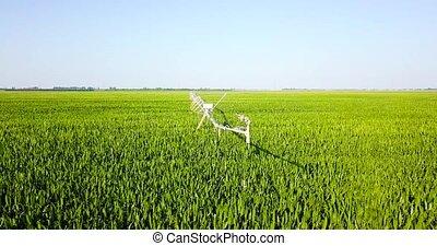 irrigation, maïs, eau, champ, machinerie