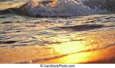irrigation, macro, plage, vague, coucher soleil