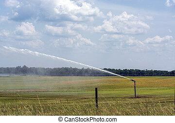 Irrigation on a field