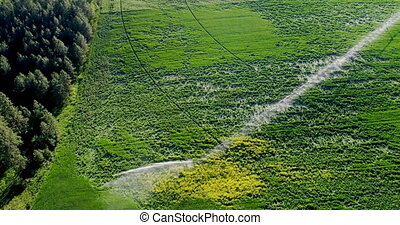 irrigation, récoltes, vert, 4k