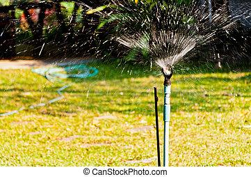 Irrigation sprinkler watering grass