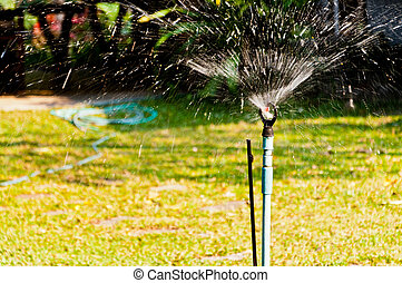 Irrigation sprinkler watering grass