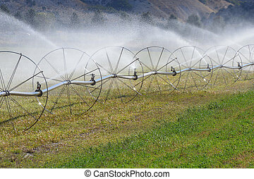 Irrigation Sprinkler Wheels - Irrigation sprinklers watering...