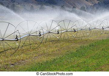 Irrigation Sprinkler Wheels - Irrigation sprinklers watering...