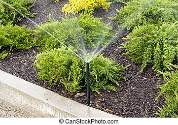 Irrigation sprinklers watering landscape - Irrigation...