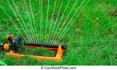 Irrigation. - Watering the lawn.