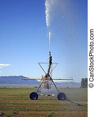 Irrigation Stream