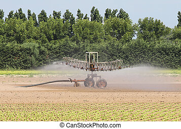irrigation system on the cultivated field