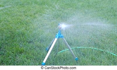 Irrigation system - technique of watering in the garden. Lawn sprinkler spraying water over green grass.