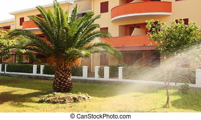 Irrigation system waters palm tree and wood before hotel