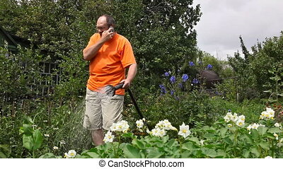 Irrigation. - The man waters the potatoes and talking on...