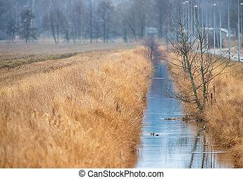 Irrigation water channel in a rural landscape