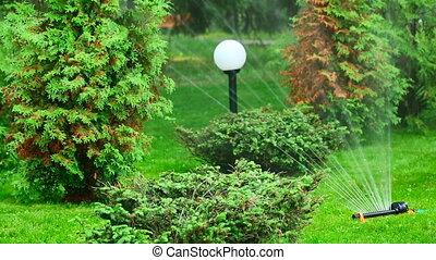 Irrigation. - Watering the garden.