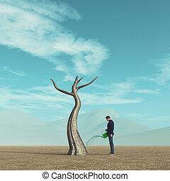 irrigazione, albero