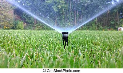 irrigazione, automatico, spruzzatore