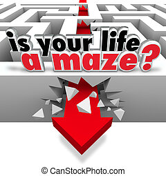 Is Your Life a Maze Directionless Need Help Guidance