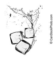 isen kuben, med, vatten, plaska, isolerat, vita, bakgrund