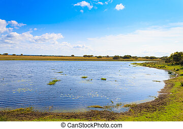 Isimangaliso Wetland Park landscape, South Africa. Beautiful...