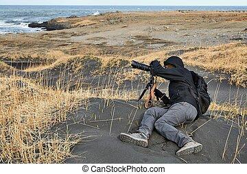 islândia, praia areia, fotógrafo, pretas