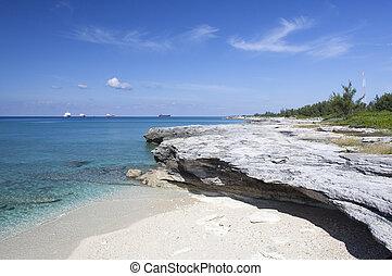 isla, bahama, orilla, magnífico