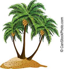 isla, caricatura, palmas