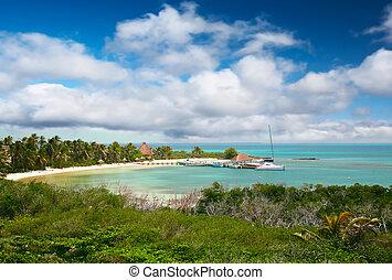 isla, contoy, plage, mexique
