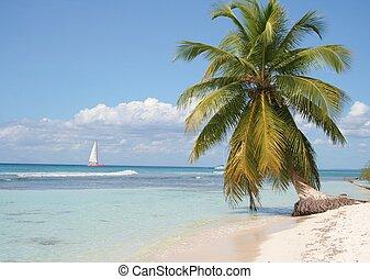 isla desertada