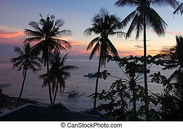 isla, filipinas, ocaso, apo, vista de mar