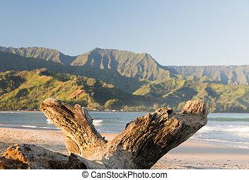 isla,  Hanalei,  Kauai, bahía