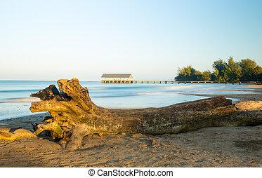 isla,  Hanalei, muelle,  Kauai