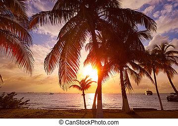 Isla Mujeres island Caribbean beach sunset