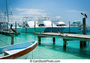 isla mujeres, sziget, jetty., mexikó, cancun