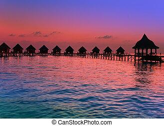 isla, océano, maldives., sunset.