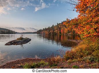isla pequeña, lago, durante, otoño