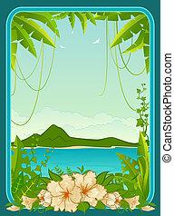 isla pequeña, palmas, tropical