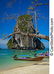 isla, phra, árbol, nang, paisaje, playa, barco, vista