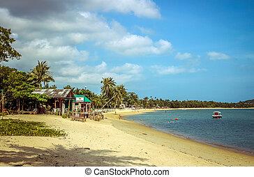 isla, samui, playa