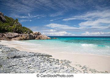 isla, seychelles, playa, océano indico