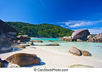 isla tropical, acantilados, rodeado, selva