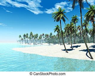 isla tropical