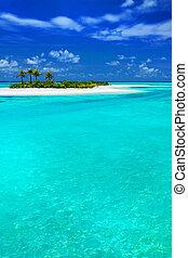isla tropical, coco, palm-trees