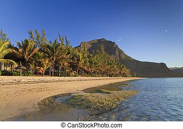 isla tropical, mauricio