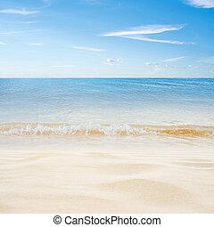 isla tropical, verano, playa