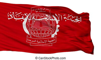 Islamic Salvation Front Flag Isolated Seamless Loop - The ...