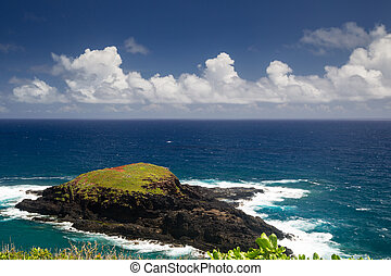 Island at Kilauea Point