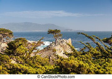 Island Coastline, Santa Cruz Island, California - Island...