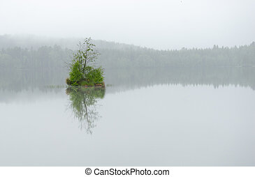 Island in lake on misty day