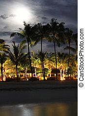 Island in ocean, Maldives. Night.  Moon above palm trees