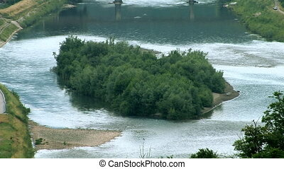 Island in river with tree