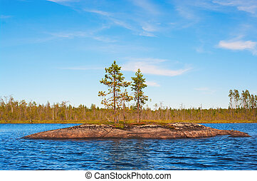 Island in the form of a smooth rock with several pines